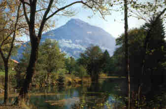 Ein See, umringt von Bäumen, im Hintergrund der Hohe Fraßen
